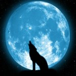 Почему мы видим только одну сторону луны?