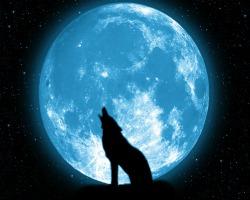Почему мы видим только одну сторону луны? - Хочу всё знать