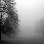 Почему образуется туман?