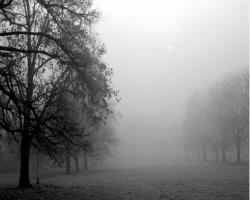 Почему образуется туман? - Хочу всё знать