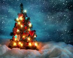 Почему на Новый Год наряжают елку? - Хочу всё знать